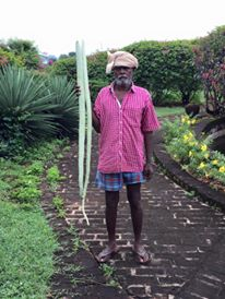 Our gardener Sadayandi